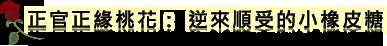 正官正緣爛桃花